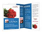 0000021256 Brochure Templates