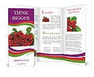 0000021515 Brochure Templates