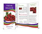 0000021580 Brochure Templates