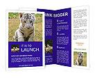 0000022142 Brochure Templates