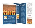 0000022430 Brochure Templates