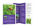 0000022475 Brochure Templates