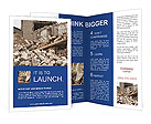 0000022527 Brochure Templates