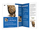0000022805 Brochure Templates