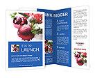 0000023349 Brochure Templates