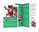 0000023364 Brochure Templates