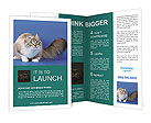0000023376 Brochure Templates
