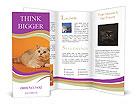 0000023395 Brochure Templates