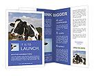 0000023484 Brochure Templates