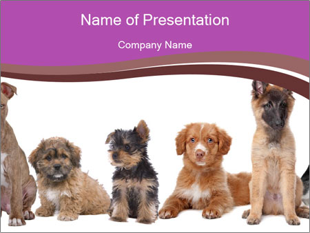Puppies Sitting In Line Powerpoint Template Backgrounds Google