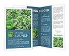 0000023560 Brochure Templates