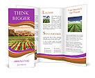 0000023638 Brochure Templates