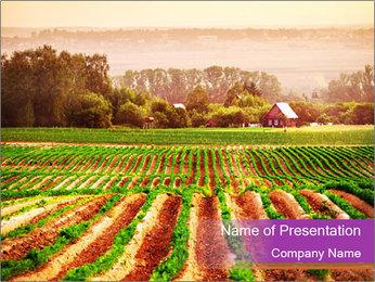 Farmland in Europe PowerPoint Template