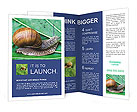 0000023654 Brochure Templates