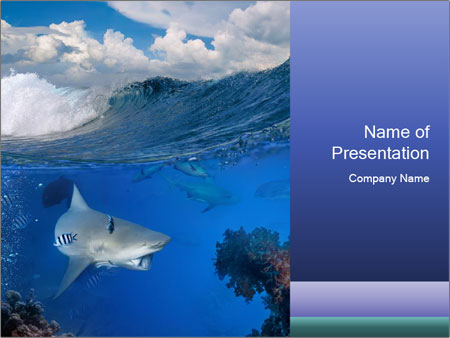 Shark Hunting Powerpoint Template Backgrounds Google Slides Id