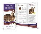 0000023706 Brochure Templates