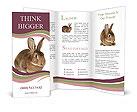 0000023710 Brochure Templates