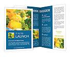0000023860 Brochure Templates