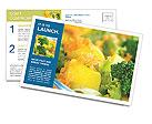0000023860 Postcard Templates