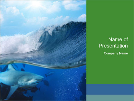 Large Shark Powerpoint Template Backgrounds Google Slides Id