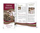 0000023903 Brochure Templates