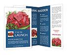 0000024100 Brochure Templates