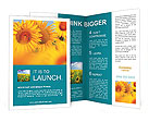 0000024122 Brochure Templates