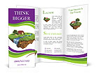 0000024157 Brochure Templates