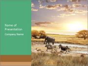 Wild Animals in African Safari PowerPoint Templates