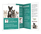 0000024243 Brochure Templates