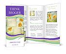 0000024318 Brochure Templates