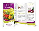 0000024392 Brochure Templates
