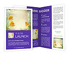 0000024409 Brochure Templates