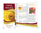 0000024413 Brochure Templates