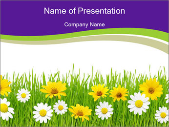 Meadow Flowers PowerPoint Template