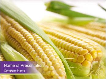 Raw Corn PowerPoint Template