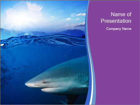 hunting shark powerpoint template & backgrounds id 0000024560, Modern powerpoint