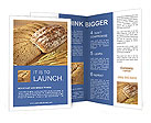 0000024827 Brochure Templates