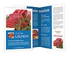 0000024990 Brochure Templates