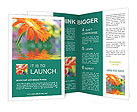 0000025150 Brochure Templates