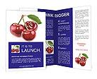 0000025234 Brochure Templates