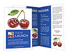 0000025309 Brochure Templates