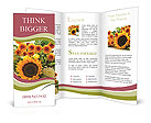 0000025348 Brochure Templates