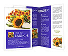 0000025349 Brochure Templates