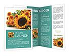 0000025350 Brochure Templates