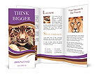 0000025360 Brochure Templates