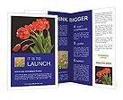 0000025617 Brochure Templates