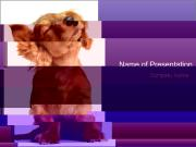 Puppy Mooving Head PowerPoint Templates