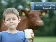 Full Cream Milk PowerPoint Templates