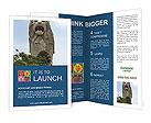 0000025918 Brochure Template